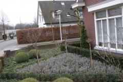 onderhoud tuin Eindhoven