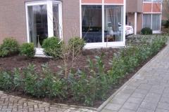 renovatie voortuin Eindhoven