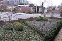 tuinonderhoud Eindhoven
